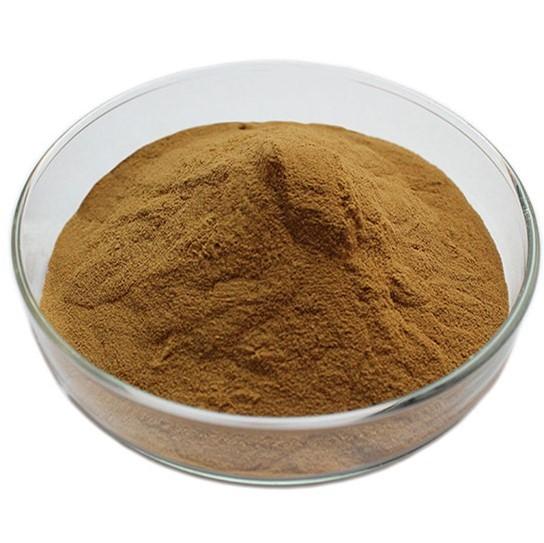 Chaga-Mushroom-Extract