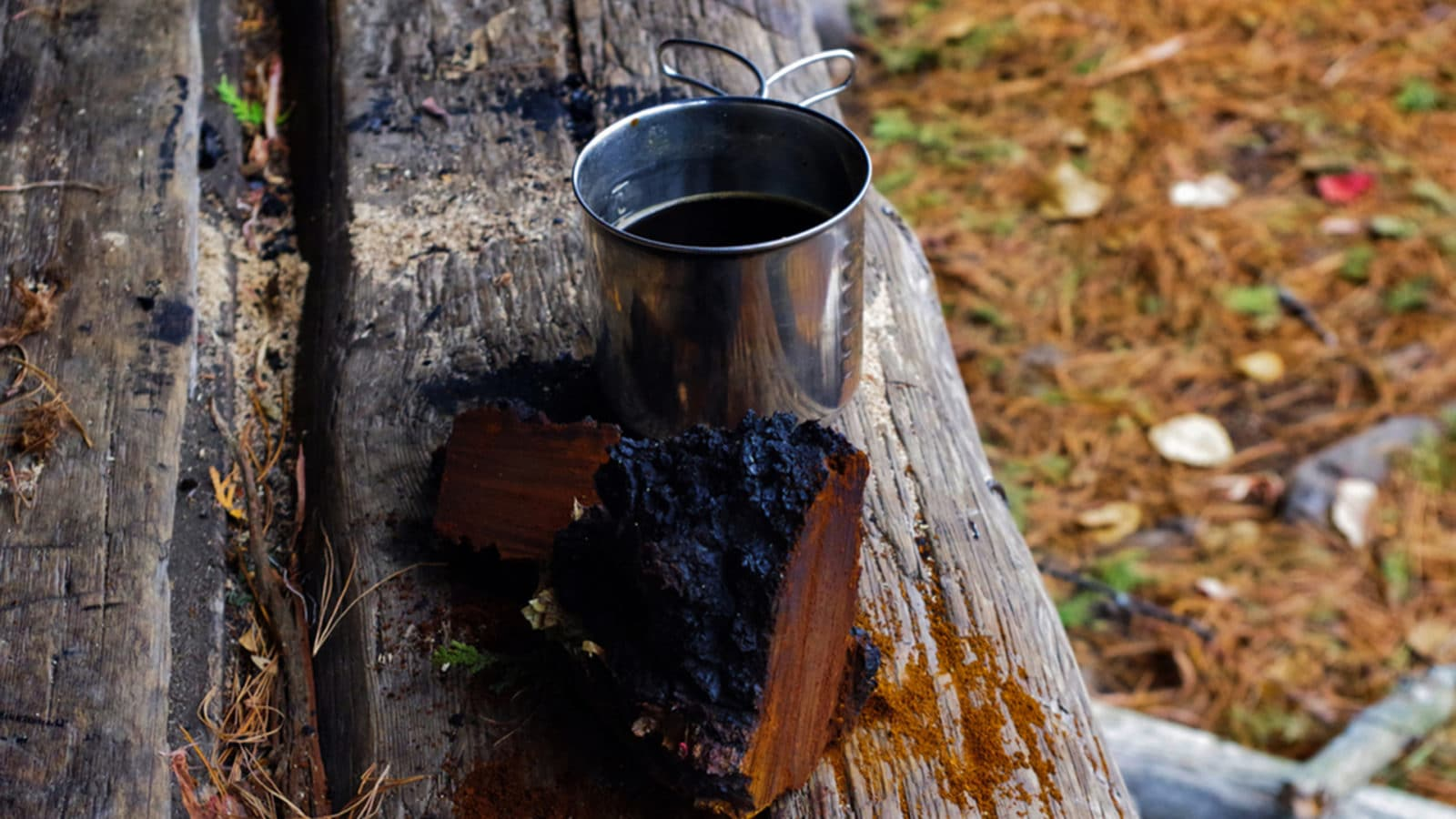 chaga recipes